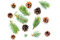 Teste padrão dos símbolos do ano novo Ramos e cones Spruce na opinião superior do fundo branco imagens de stock royalty free
