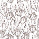 Teste padrão dos tulips do vetor Fotografia de Stock Royalty Free