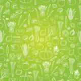 Teste padrão dos vegetais do vetor Fundo sem emenda dos vegetais imagem de stock