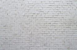 Teste padrão e fundo brancos do tijolo da cor Fotos de Stock