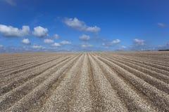 Teste padrão e texturas do solo do giz Foto de Stock Royalty Free