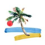 Teste padrão erval floral maravilhoso bonito tropical verde bonito brilhante bonito de um por do sol da praia, palmeira do verão  ilustração stock