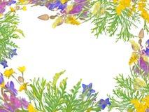Teste padrão estilizado do ramalhete floral Foto de Stock Royalty Free