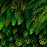 Teste padrão exótico com folhas tropicais em um fundo preto ilustração stock