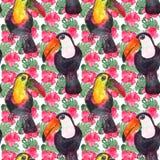 Teste padrão exótico das flores e dos pássaros ilustração do vetor