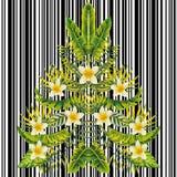 Teste padrão exótico do estilo do espelho do plumeria da árvore de Natal Foto de Stock
