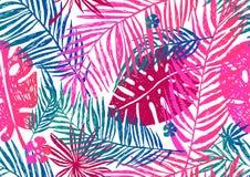 Teste padrão exótico sem emenda com folhas de palmeira azuis cor-de-rosa em um fundo branco Ilustração do vetor Fotografia de Stock Royalty Free
