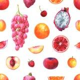 Teste padrão exótico sem emenda pintado à mão com frutos da aquarela ilustração do vetor