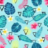 Teste padrão exótico tropical sem emenda das folhas de palmeira Fotografia de Stock Royalty Free