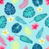 Teste padrão exótico tropical sem emenda das folhas de palmeira Imagens de Stock Royalty Free