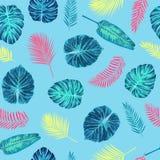 Teste padrão exótico tropical sem emenda das folhas de palmeira Foto de Stock Royalty Free