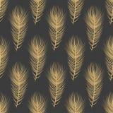 Teste padrão excelente da natureza da plumagem fotografia de stock royalty free