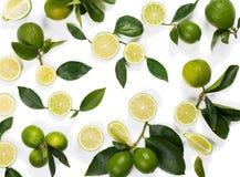 Teste padrão feito do fruto do cal Imagens de Stock Royalty Free