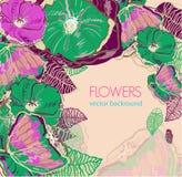 Teste padrão floral Foto de Stock Royalty Free