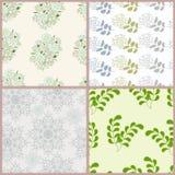 Teste padrão floral Imagem de Stock Royalty Free