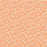 Teste padrão floral abstrato Imagens de Stock