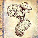 Teste padrão floral barroco do rolo do vintage do vetor Fotografia de Stock