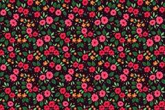 Teste padrão floral bonito Foto de Stock