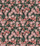 Teste padrão floral bonito Imagens de Stock