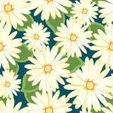 Teste padrão floral bonito Teste padrão sem emenda Flores Botões brilhantes, folhas, flores Flores para cartões, cartazes, inseto Foto de Stock Royalty Free