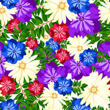 Teste padrão floral bonito Teste padrão sem emenda Flores Botões brilhantes, folhas, flores Flores para cartões, cartazes, inseto Fotografia de Stock