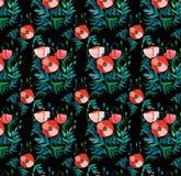 Teste padrão floral brilhante bonito de papoilas vermelhas com folhas e cabeças do verde na aquarela preta do fundo ilustração stock