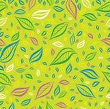 Teste padrão floral colorido amarelo sem emenda com folhas Fotografia de Stock