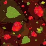 Teste padrão floral com folhas e bagas Fotografia de Stock