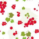 Teste padrão floral com folhas e bagas Fotos de Stock