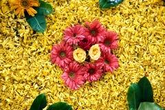 Teste padrão floral com folhas e flores de muitas cores Foto de Stock Royalty Free