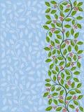 Teste padrão floral com ilex Fotos de Stock Royalty Free