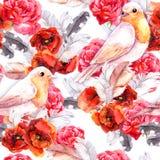 Teste padrão floral com papoila, cor-de-rosa sem emenda e pássaros watercolour Fotos de Stock Royalty Free