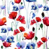 Teste padrão floral com papoilas watercolor ilustração do vetor