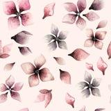 Teste padrão floral da aquarela sem emenda em um fundo cor-de-rosa Fotos de Stock Royalty Free