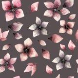 Teste padrão floral da aquarela sem emenda em um fundo escuro Foto de Stock Royalty Free
