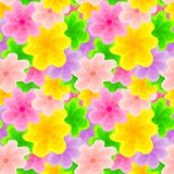 Teste padrão floral da cor Fotografia de Stock Royalty Free