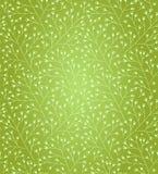 Teste padrão floral da mola. O verde decorativo ramifica fundo ilustração royalty free