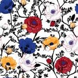 Teste padrão floral de florescência nos muitos tipo das flores botanical ilustração do vetor