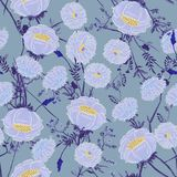 Teste padrão floral de florescência nos muitos tipo das flores Peixe-agulha da floresta fotografia de stock royalty free