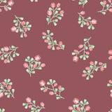 Teste padrão floral delicado Imagem de Stock Royalty Free