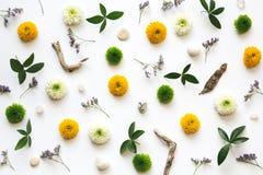 Teste padrão floral do quadro completo Foto de Stock Royalty Free