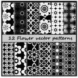 teste padrão floral do vetor 12 Imagem de Stock