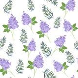 Teste padrão floral do vetor Fotografia de Stock