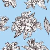 Teste padrão floral do vetor sem emenda Flores reais do lírio em um fundo azul Fotos de Stock Royalty Free