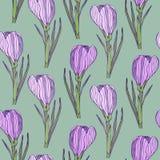 Teste padrão floral do vintage com flores bonitas Vector o teste padrão sem emenda para a matéria têxtil ou o projeto cerâmico ilustração stock