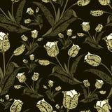 Teste padrão floral do vintage sem emenda com tulips ilustração stock