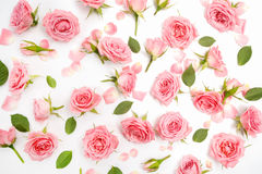 Teste padrão floral feito de rosas cor-de-rosa, folhas verdes, ramos no fundo branco Configuração lisa, vista superior Teste padr fotografia de stock