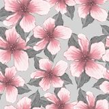 Teste padrão floral Flores cor-de-rosa da aquarela Foto de Stock
