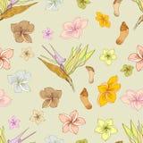 Teste padrão floral havaiano ilustração stock