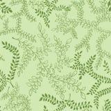 Teste padrão floral O verde deixa a ilustração do esboço Fotos de Stock Royalty Free